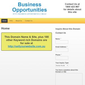 Business Oppurtinities